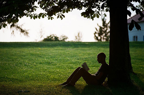 20 Quick Reads that Will Change the Way You Live, Love and Work