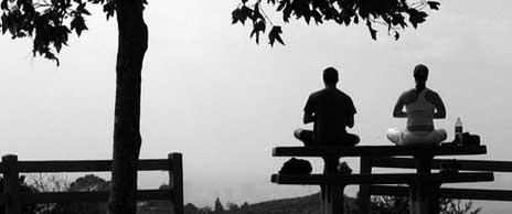 Meditations On Life